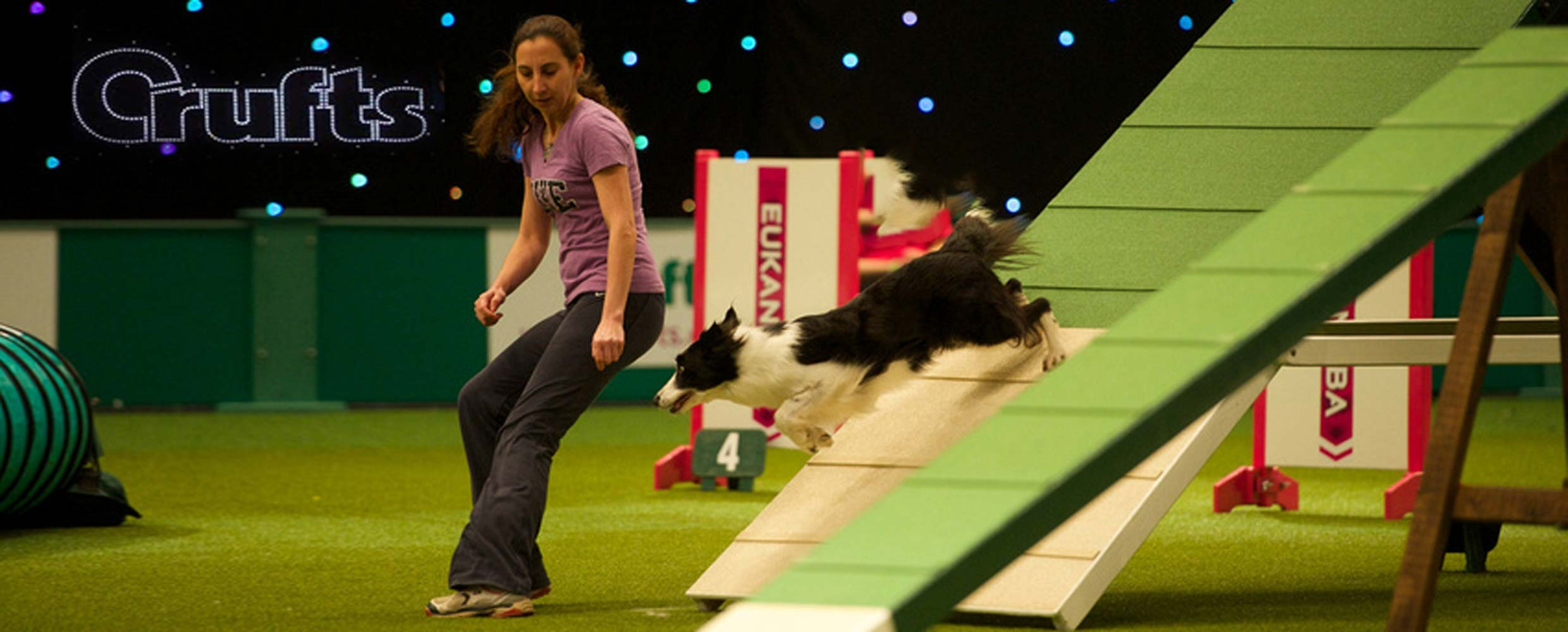 Alison Roets with Border Collie Ostara on the dog walk at Crufts