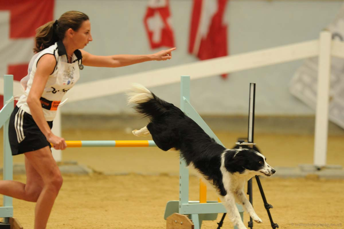 Alison Roets and Border Collie Ostara FCI Jumping 2010