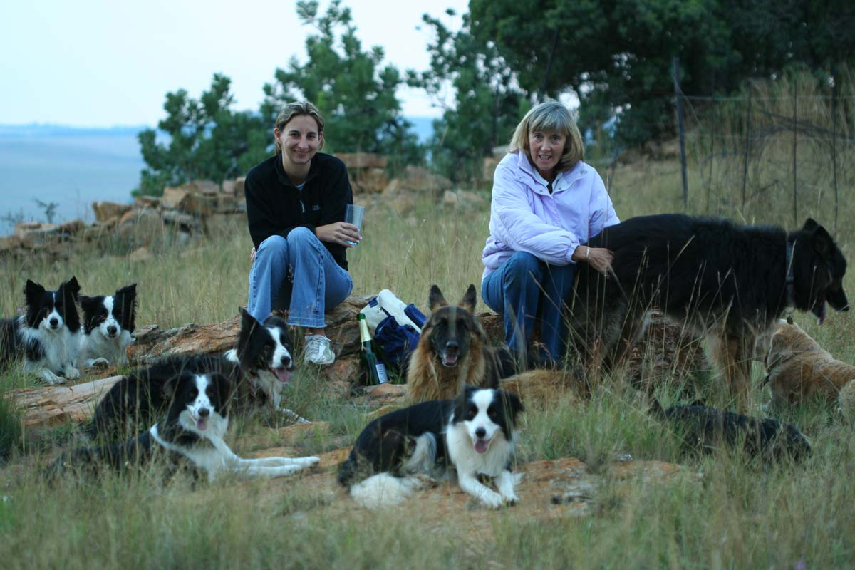 Alison Roets with Mum German Shepherds and Border Collies in Magaliesburg