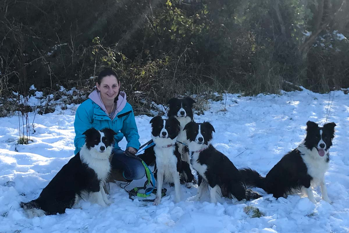 Alison Roets and five Border Collies sit stay in the snow