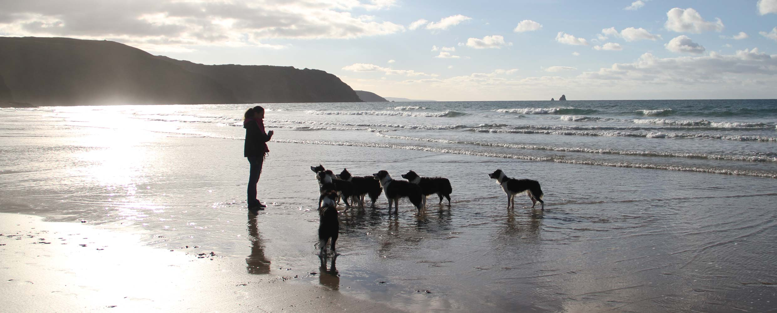 Alison Roets and her Border Collies on the beach in Perranporth, Cornwall