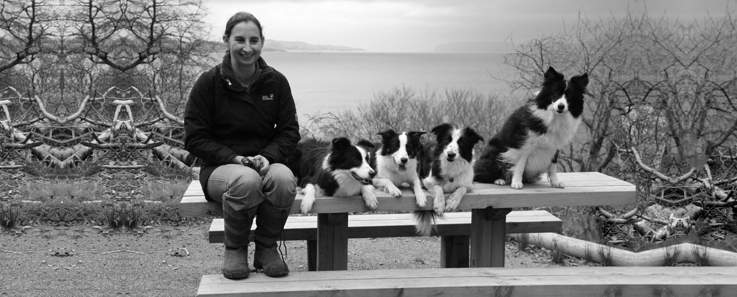 Alison Roets and her Border Collies on a picnic table in Scotland