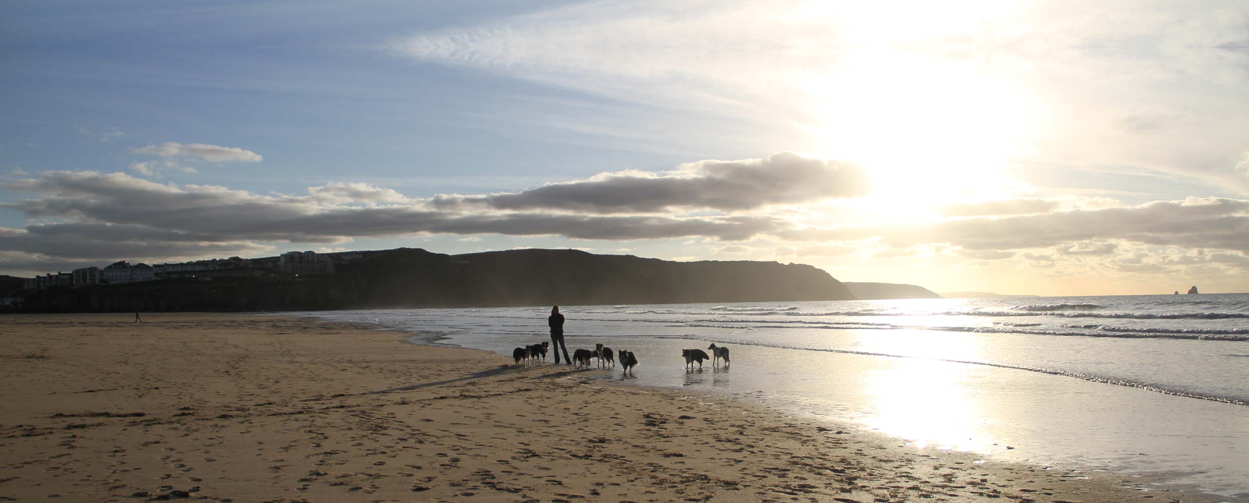 Alison Roets with her Border Collies on the Beach in Newquay, Cornwall