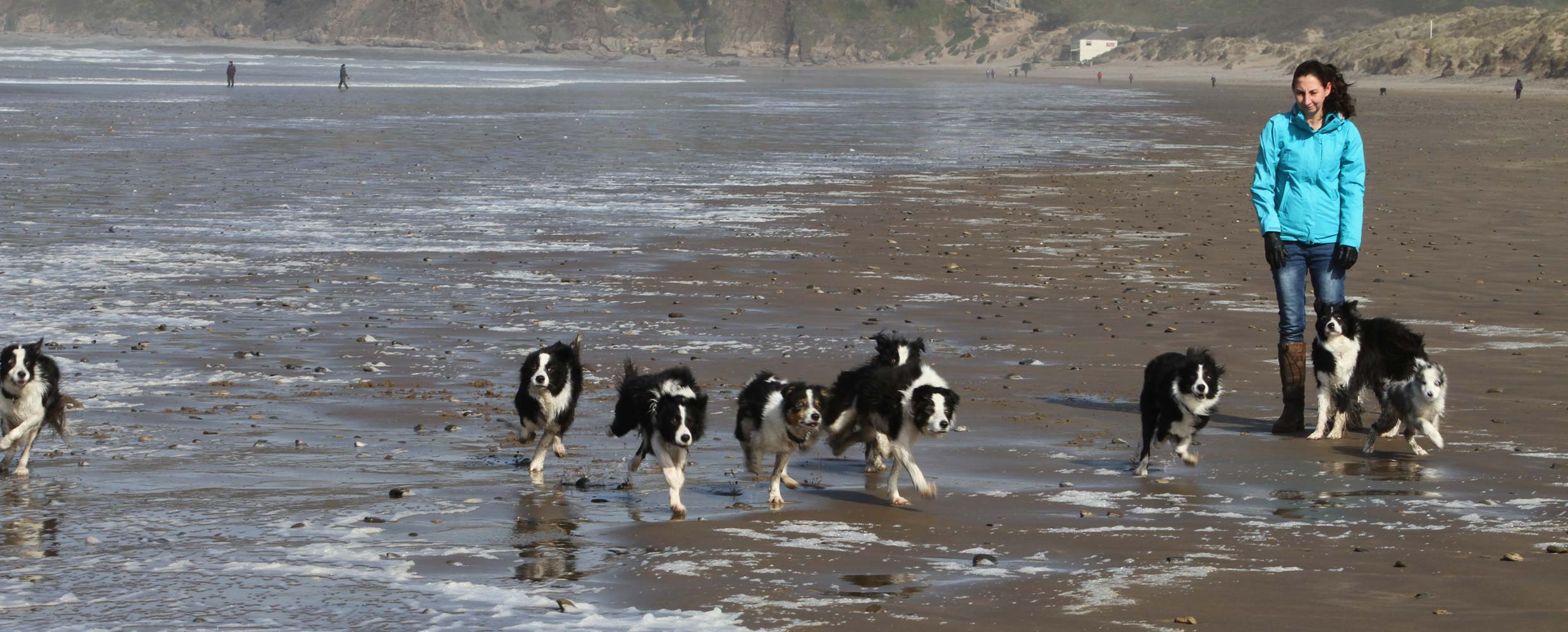 Alison Roets and her Border Collies on the beach in Saunton, Devon
